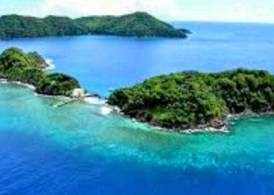 Little Tobago Island Bird Sanctuary and Goat Island Snorkelling Adventure