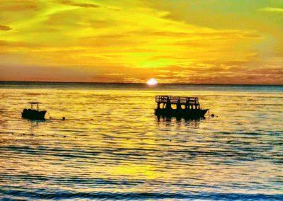 BioLuminescence Island Girl Tours Tobago